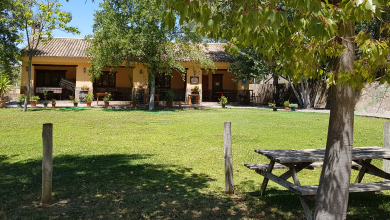 Photo of Restaurante «El Almacén»